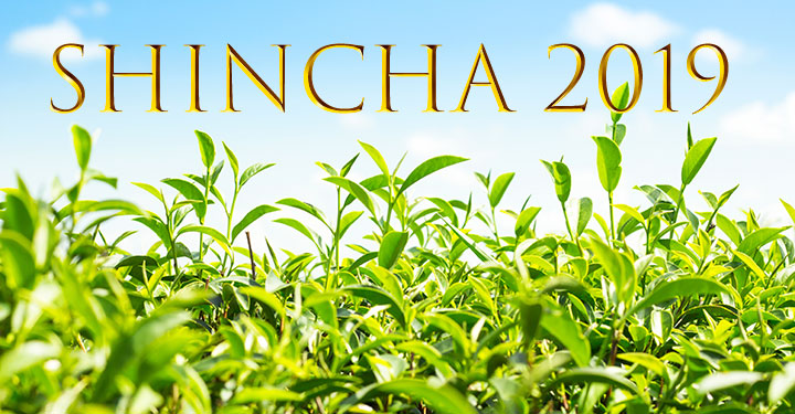 Shinca Japanese Green Tea